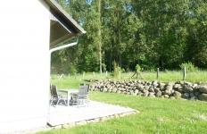 Blick im Garten Pappelwald
